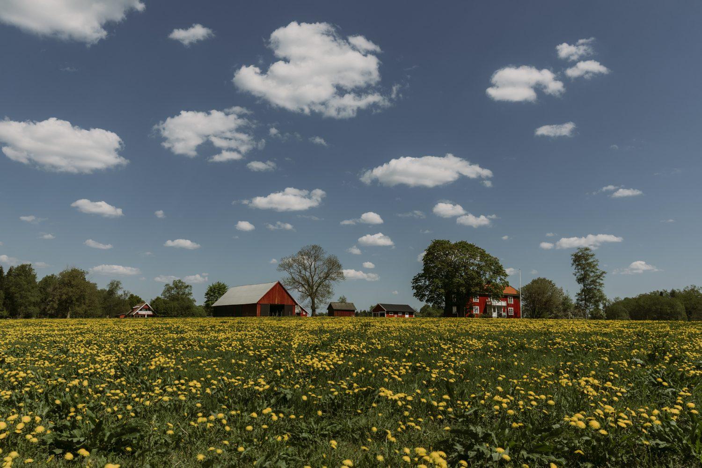 Rural home in Sweden
